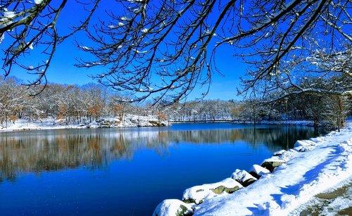 winter  massachusetts  olmsted