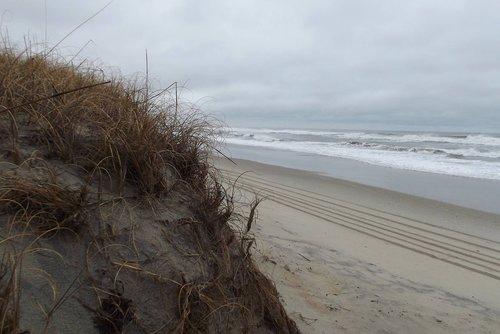 winter  sand dune  deserted