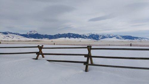 winter  snow  fence