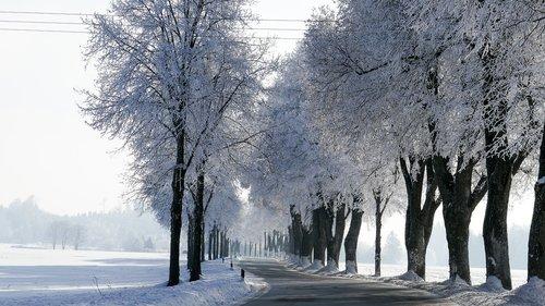 winter  snow  bavaria