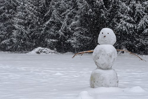 winter  snow  snowman