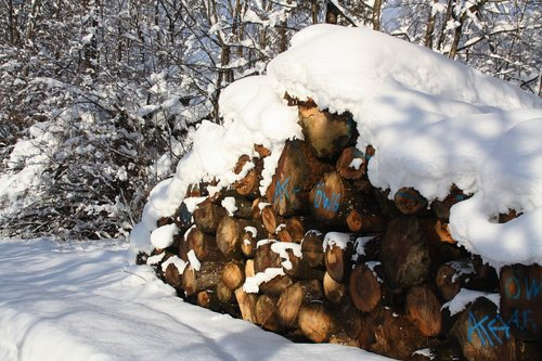 winter  snow  firewood