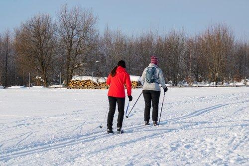 winter  sport  cross country skiing