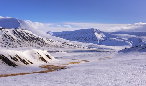 winter  snow  svalbard
