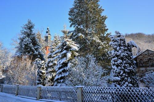 winter  snowy  frosty