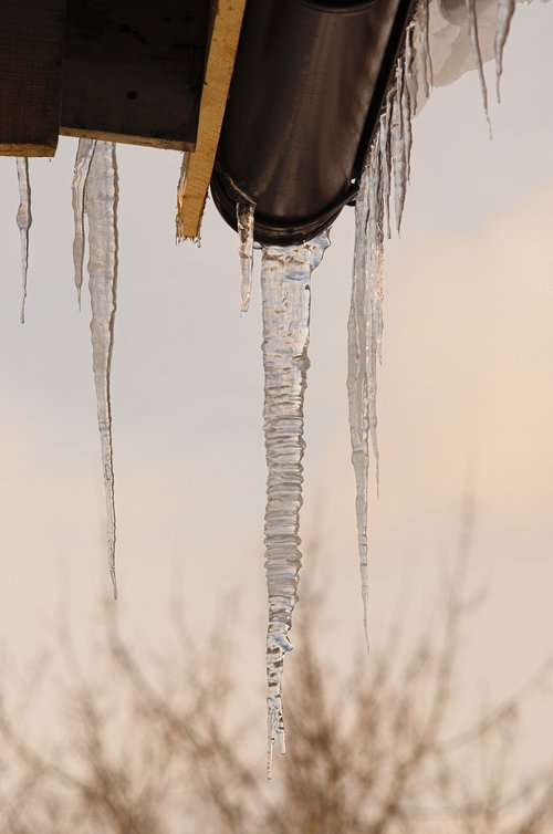 winter  icicle  frost