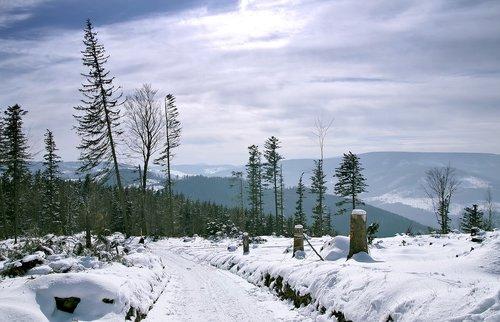 winter  mountains  snow