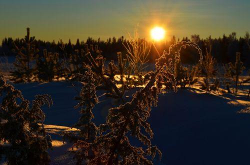 winter norrbotten norrland