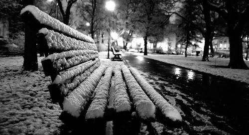 winter bench park