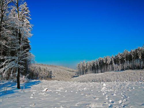 winter panorama snow
