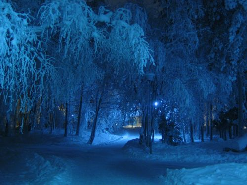winter night blue