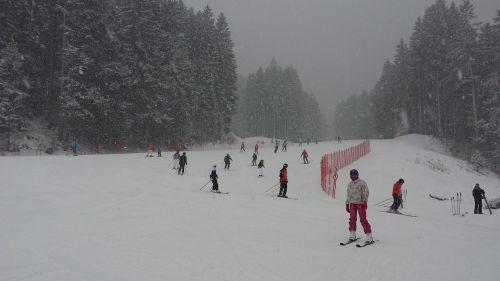 winter the dolomites snow