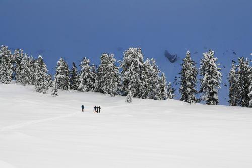 winter snow snowshoe