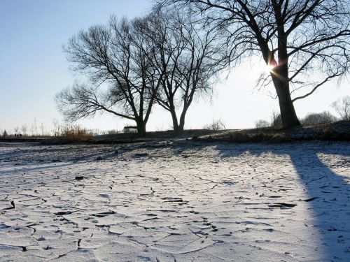 winter sun pond