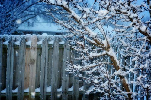 winter fence snow