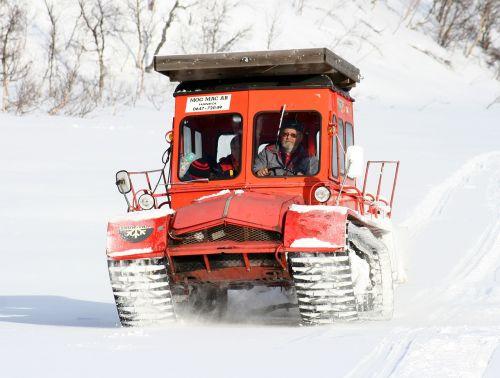 winter snow cat mountain