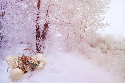 kraštovaizdis, žiema, sniegas, Kalėdos, apdaila, žiema fone
