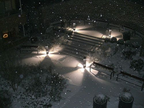winter impressions winter snow