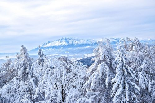 winter in the mountains mountain peaks tatry