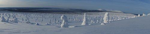 winter landscape  fell  landscape