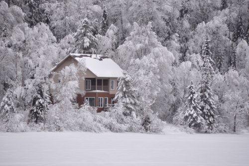 winter landscape snow frozen lake