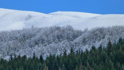winter landscape nature winter