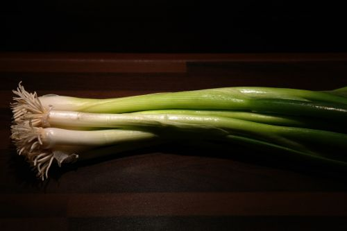 winter onion leek root