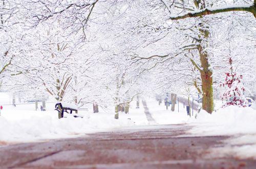 Winter Route