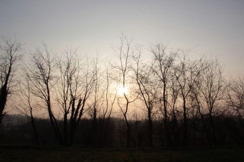 winter sunset sun sunset