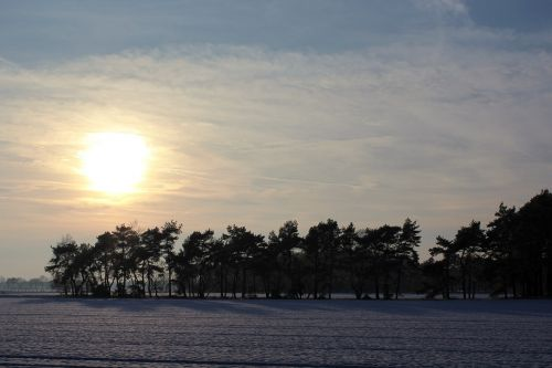 wintry winter landscape
