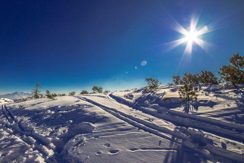 wintry winter snow