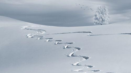 wintry mountain snow