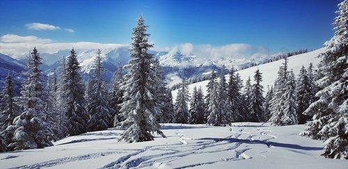 wintry  skiing  alpine