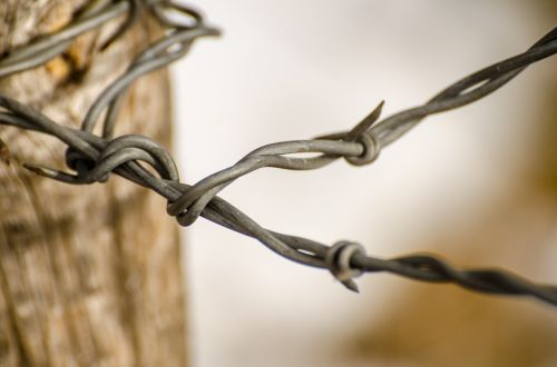 wire fence barbed wire