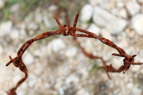 wire barbed wire stainless