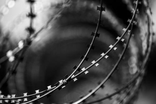 wire razor fence