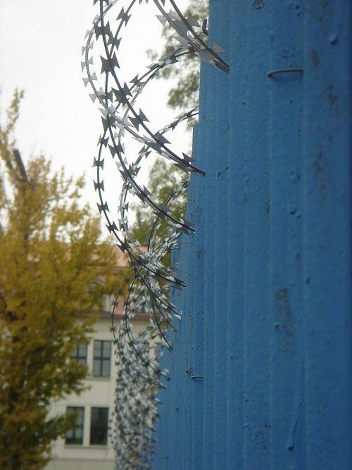 wire spines fence