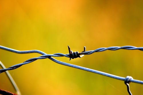 wire  fence  metal