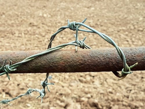 wire  metal  barbed