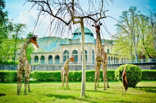 wire figures sculpture giraffes