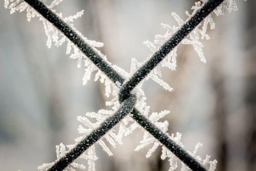 wire mesh fence eiskristalle frozen
