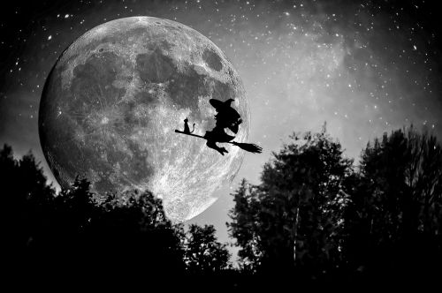 witch broom halloween