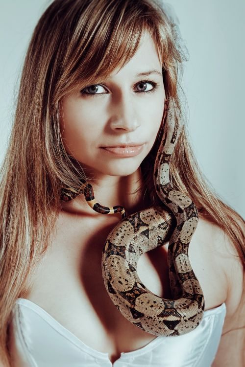 with a snake boa constrictor snake