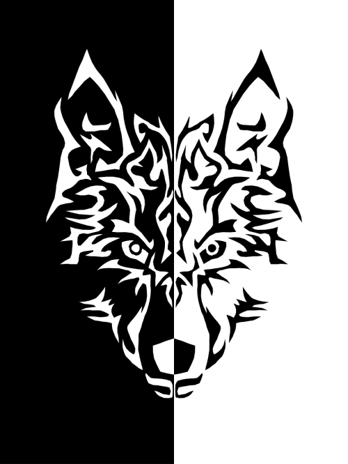 wolf black and white iphone wallpaper