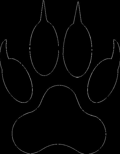 wolf footprint lion