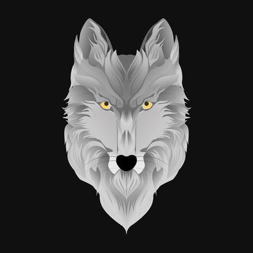 wolf  animal  predator
