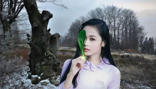 woman female beauty
