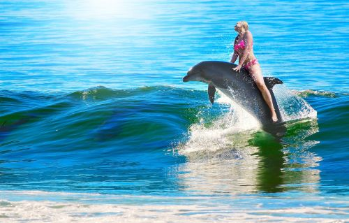 woman dolphin ride