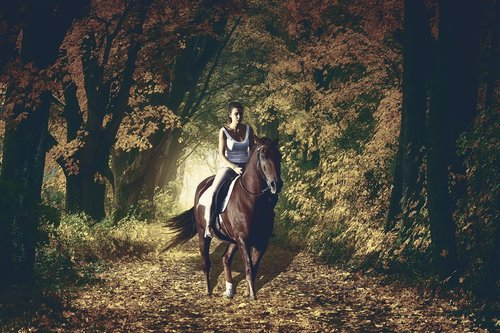woman  horse backriding  autumn