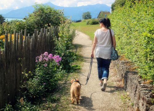 moteris,asmuo,šuo,žmogus,gyvūnas,gamta,prijungtas,vaikščioti,eiti,vaikščioti,ryšys,Draugystė,kartu,bendravimas